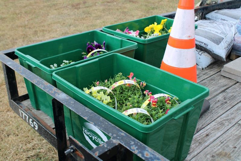 Multicolored flowers sit in plastic tubs on a flatbed trailer